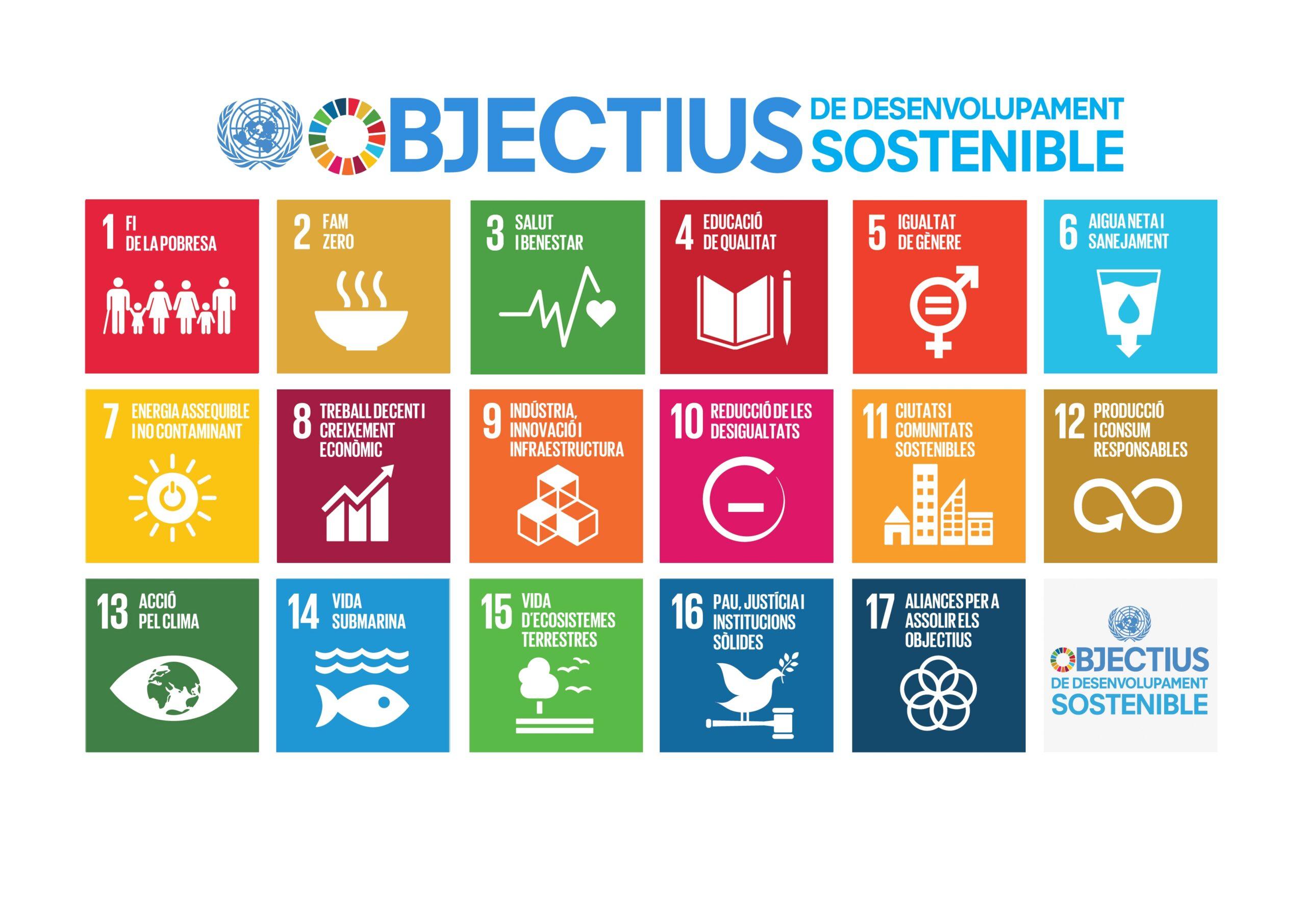 Assessorament en linies estratègiques d'actuació per acomplir ODS