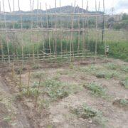Empowerment horticola